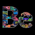 be theme logo 1